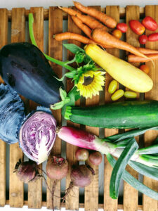 LaFarm produce including eggplant, tomatoes, carrots, squash, a sunflower, and more